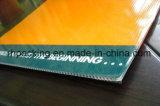 Hoja reutilizable PP plástico acanalado / PP Coroplast hoja / lámina impermeable / PP hueco con tratamiento corona / reflexiva de Cine pegar