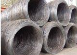 hilos de máquina del acero de alto carbón 82b 6.5m m 8m m 10m m 16m m