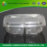 Conteneur de nourriture de empaquetage de boîtes à fruit en plastique transparent remplaçable