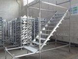 Лестница для лесов Ringlock (лестницы, проступей лестницы, стрингера лестницы)