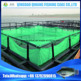 Il pontone flessibile dell'HDPE cuba il galleggiamento della gabbia dei pesci dell'oceano del mare profondo fatto in Cina