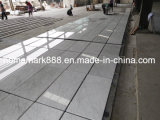 Tuile de marbre blanche de Carrare, marbre de Carrare, tuile de marbre blanche