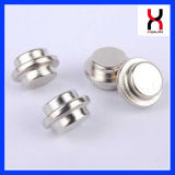 中国の磁石の工場によってカスタマイズされるサイズのNdFeBの常置磁石