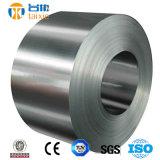 De Strook van het roestvrij staal (SS301, 304, 304L 316)