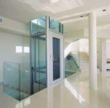 Precio casero de cristal vertical del elevador con la puerta automática