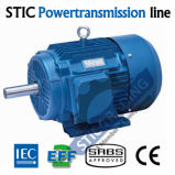 IEC Cast Iron Ie2 2pole High Efficiency AC Motor