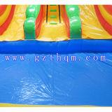 Glissière d'eau gonflable géante pour la glissière d'eau gonflable couleur adulte/lumineuse avec le syndicat de prix ferme