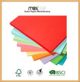 papel compensado de papel de empaquetado del color de la impresión de la talla de la carta 80g con la pulpa de madera