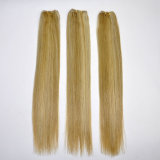 Уток 100% человеческих волос Remy цвета смешивания цены по прейскуранту завода-изготовителя