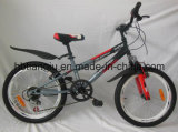 "12 "" /16 "" /20 "" di New d'acciaio Model Kids Bike/Children Bike per 6 Years Old Child/Cheap Bike per Children Exported a Bicycle africano"