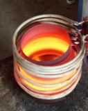 環境保護の誘導加熱のアニーリング装置