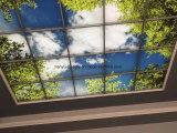 коробка неба потолка 60X60 светлая