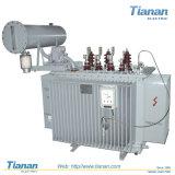 10~35kv сила, печь, трансформатор выпрямителя тока/погруженный маслом трансформатор