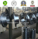Steel inoxidable Forged Flange (304/304L/316/316L)
