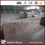 De opgepoetste Natuurlijke Trede van het Graniet van de Stappen van de Steen voor Openlucht/Binnen