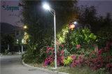 Prix solaire 40W de réverbère de jardin de DEL