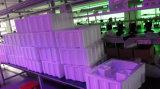 200W Wholesale heißen beweglichen Kopf für Stadiums-Beleuchtung (ICON-M003-5R)