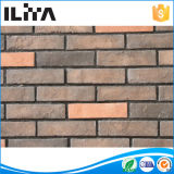 Ladrillo artificial del revestimiento de la pared de piedra de la cultura, molde, Wall El panel (YLD-20004)
