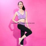 Sutiã confortável dos esportes das senhoras do desgaste da ginástica de mulheres da alta qualidade