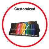 72의 색깔 연필 고정되는 주석 상자