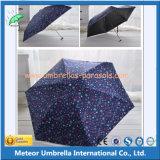 Guarda-chuva de dobramento da chuva do manual 5 da promoção