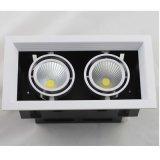Ein Kopf/zwei Köpfe/drei Köpfe PFEILER LED Gitter-Licht