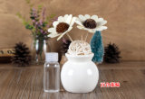 Colorful Ceramic Fragrance Aroma Reed Diffuser Decoração Gift Set com 100ml Perfume Oil para SPA, Hotel, Office, Inn, Home Deco