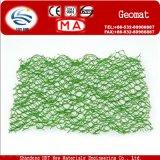Beschermend Vegetatie Plastic Geomat aan Vaste Water en Grond