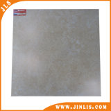 Rustikales 3D Inkjet Porcelain Floor Tile (6001)