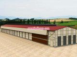 Costruzione della struttura d'acciaio per l'ufficio del gruppo di lavoro del magazzino del bestiame con installazione efficiente
