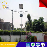 Sale caldo in Africa Solar LED Street Light