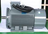 Serie der Oberseite-Y Y2 Yjt kleine Wechselstrom-Kompressor-Elektromotor