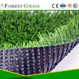 屋外および屋内場所のための総合的な草