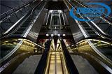 Passeio movente do elevador do passageiro da alameda