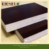 Película Face Plywood para Building Construction Materials