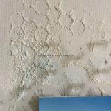 [وير مش] تشويك يستعمل في بناء/حارّة ينخفض يغلفن [وير نتّينغ] سداسيّ