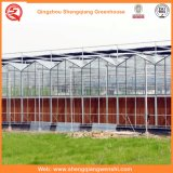 Het Systeem van de Hydrocultuur van de Serres van het polycarbonaat voor Groenten/Bloemen/Fruit