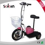 Складной безщеточный E-Самокат колеса баланса 3 удобоподвижности мотора (SZE500S-3)