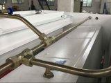 Máquina que pela hidráulica de la placa de acero