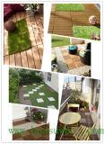 Azulejos al aire libre de WPC DIY (30S30-8)