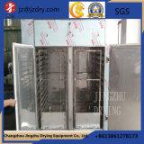 Circulação de alta temperatura CT-C Series Hot Air Forno de secagem