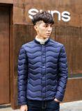 直接詰物の冬のコートのための継ぎ目が無い冬のジャケットファブリック