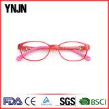 Ynjn большинств популярные стекла рамки Eyewear новой модели OEM (YJ-G81128)
