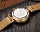 Belbi Form-beiläufiges Geschäfts-wasserdichte Stahlquarz-Frauen-Uhr
