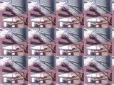 Professioneller roter Pigment-Riemen-Trockner