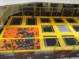 セリウムのバスケットボールたがのアクセサリが付いている標準屋内遊び場のトランポリン公園