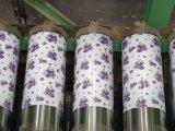 El color de la impresión PPGI/PPGL cubrió las bobinas de acero