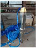 Alta velocità della pompa buona profonda con scienza e tecnologia brevettate