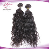 Extensão natural do cabelo da onda do cabelo malaio rápido do Virgin do transporte