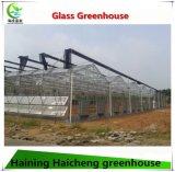 農業のための自動制御システムのガラス温室